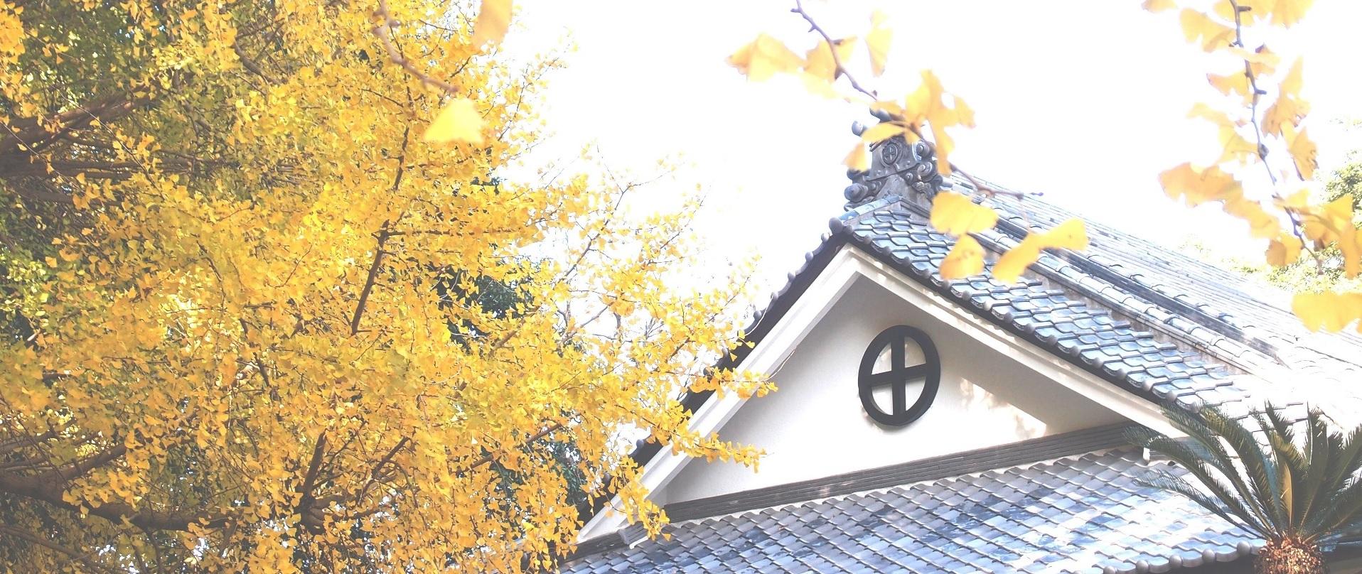 島津家菩提と歴史を遺し伝える